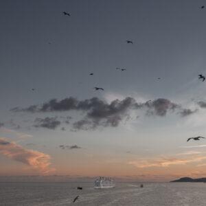 Dove tramonta il mare_Davide Bertuccio_17